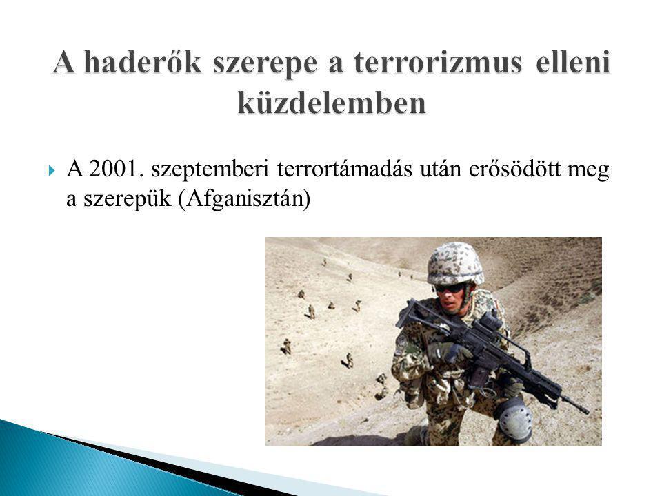  A 2001. szeptemberi terrortámadás után erősödött meg a szerepük (Afganisztán)
