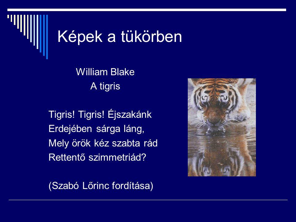 Képek a tükörben William Blake A tigris Tigris! Tigris! Éjszakánk Erdejében sárga láng, Mely örök kéz szabta rád Rettentő szimmetriád? (Szabó Lőrinc f