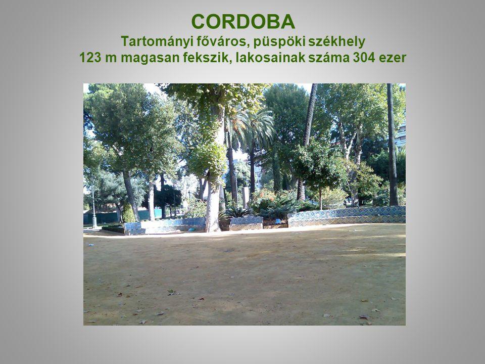 CORDOBA Tartományi főváros, püspöki székhely 123 m magasan fekszik, lakosainak száma 304 ezer