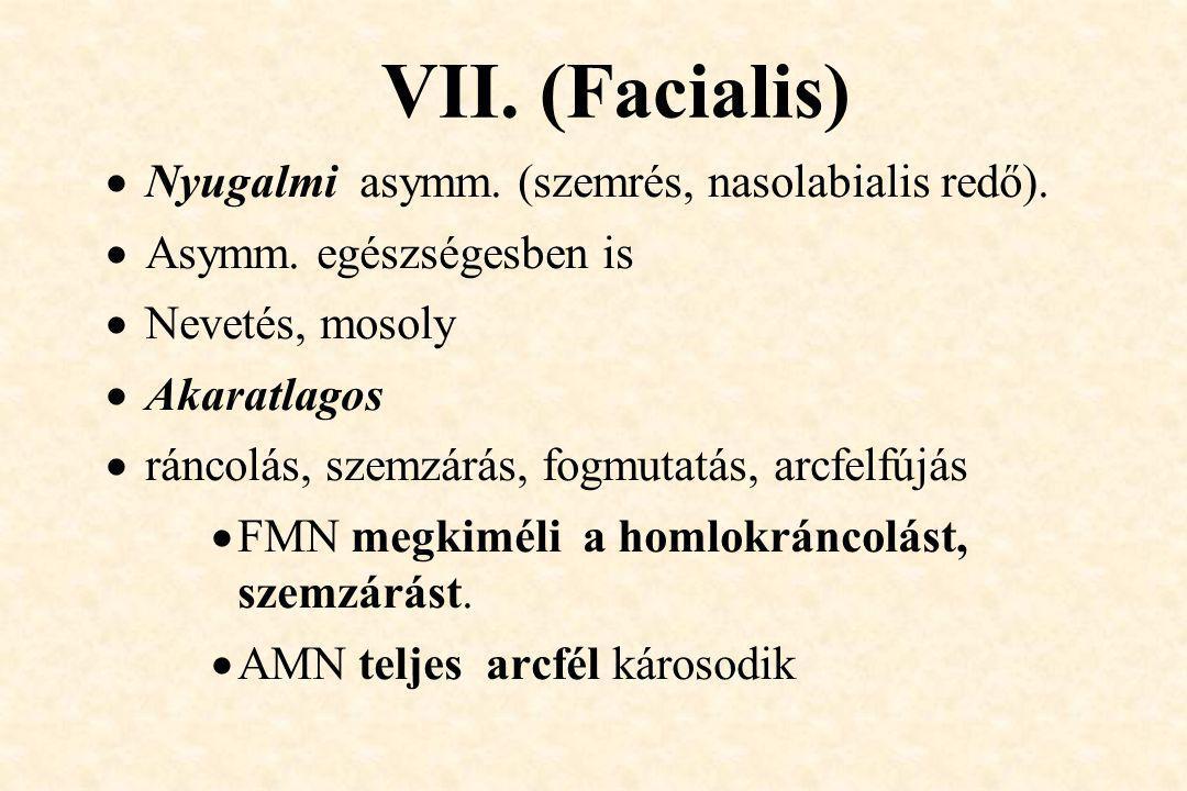 VII. (Facialis)  Nyugalmi asymm. (szemrés, nasolabialis redő).  Asymm. egészségesben is  Nevetés, mosoly  Akaratlagos  ráncolás, szemzárás, fogmu