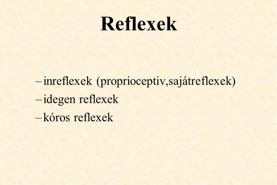 Reflexek –inreflexek (proprioceptiv,sajátreflexek) –idegen reflexek –kóros reflexek