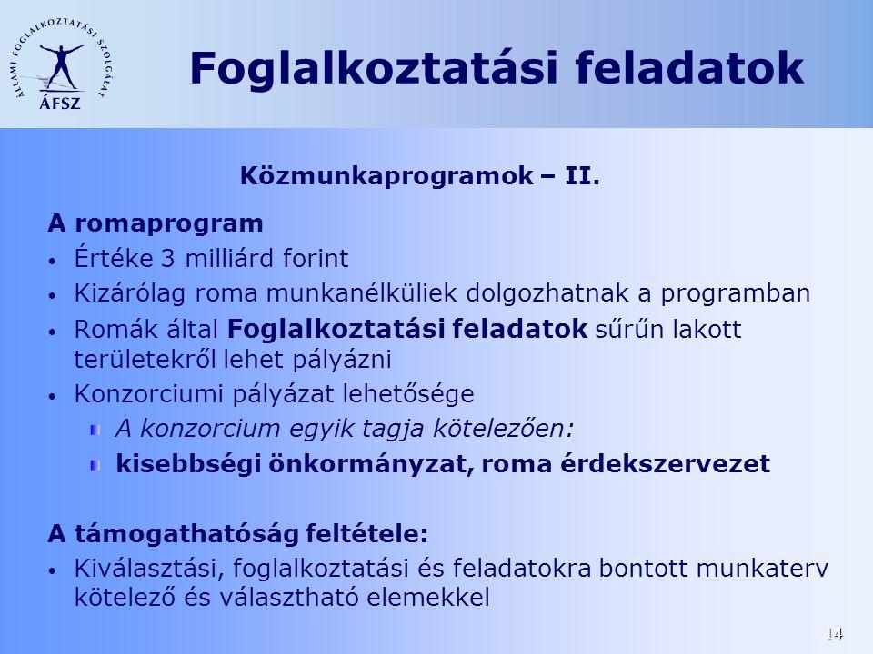 14 Közmunkaprogramok – II. A romaprogram • Értéke 3 milliárd forint • Kizárólag roma munkanélküliek dolgozhatnak a programban • Romák által Foglalkozt