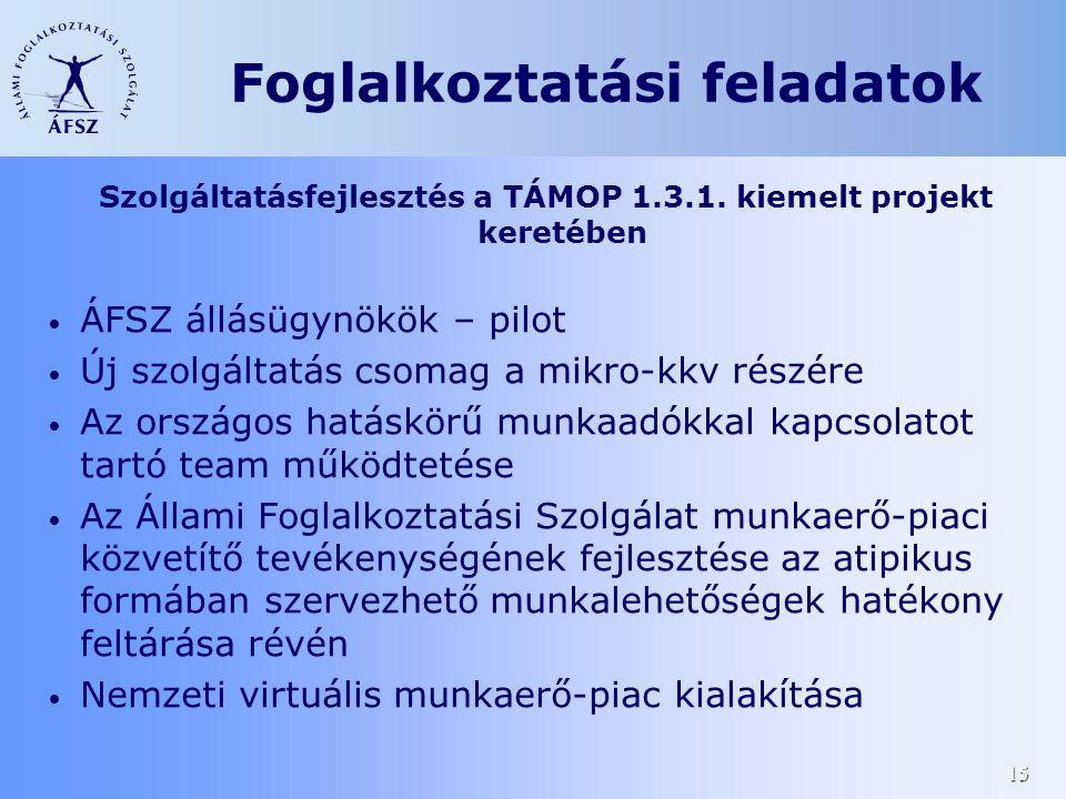 15 Szolgáltatásfejlesztés a TÁMOP 1.3.1. kiemelt projekt keretében • ÁFSZ állásügynökök – pilot • Új szolgáltatás csomag a mikro-kkv részére • Az orsz