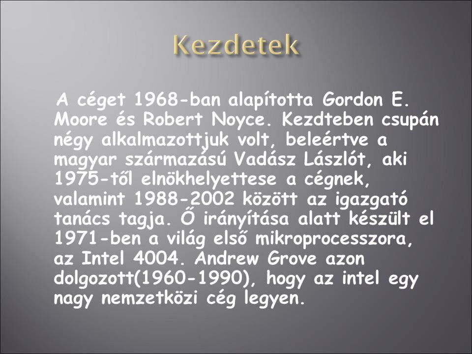 A céget 1968-ban alapította Gordon E. Moore és Robert Noyce. Kezdteben csupán négy alkalmazottjuk volt, beleértve a magyar származású Vadász Lászlót,