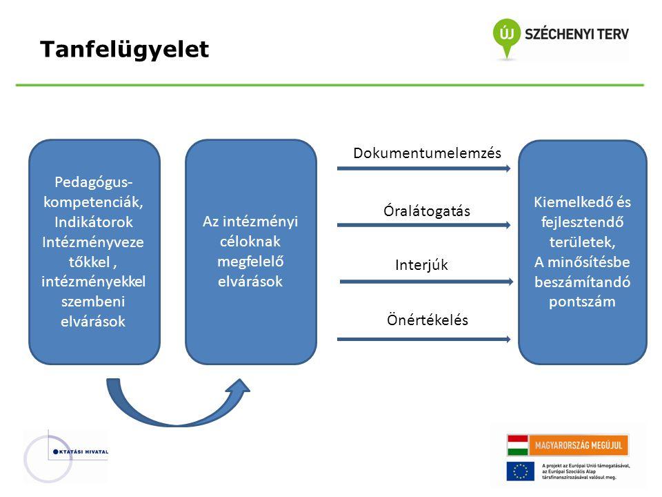 A tanfelügyeleti standardok felépítése Pedagógus A pedagógus kompetenciák- kal megegyező területek (8 terület) Az értékelési területeket alábontó szempontok Az értékelési szempontoknak megfelelő eszközrendszer VezetőA vezetői kompetenciák- kal megegyező területek (5 terület) Az értékelési területeket alábontó szempontok Az értékelési szempontoknak megfelelő eszközrendszer IntézményAz intézményi működés területei (7 terület) Az értékelési területeket alábontó szempontok Az értékelési szempontoknak megfelelő eszközrendszer