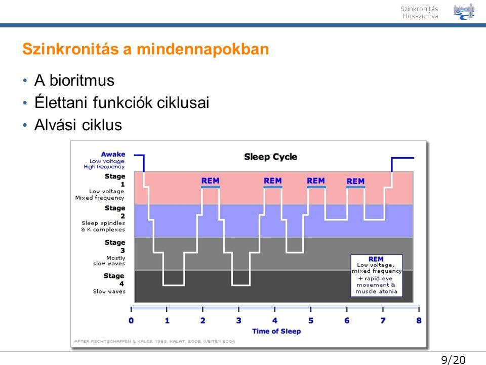 Szinkronitás Hosszu Éva 9/20 • A bioritmus • Élettani funkciók ciklusai • Alvási ciklus Szinkronitás a mindennapokban