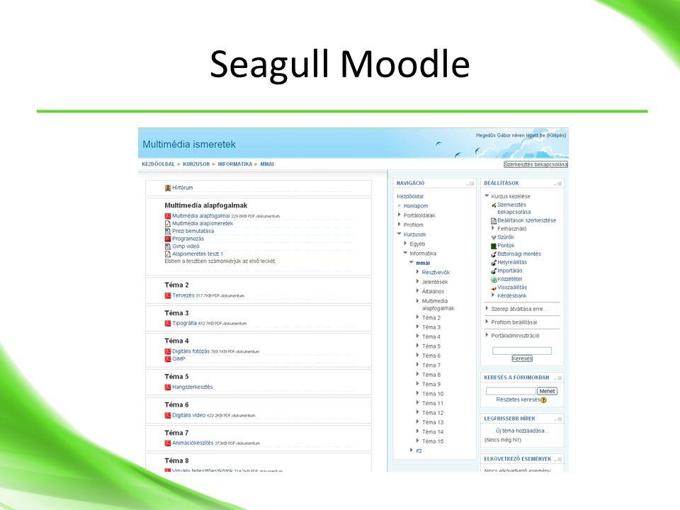 Seagull Moodle