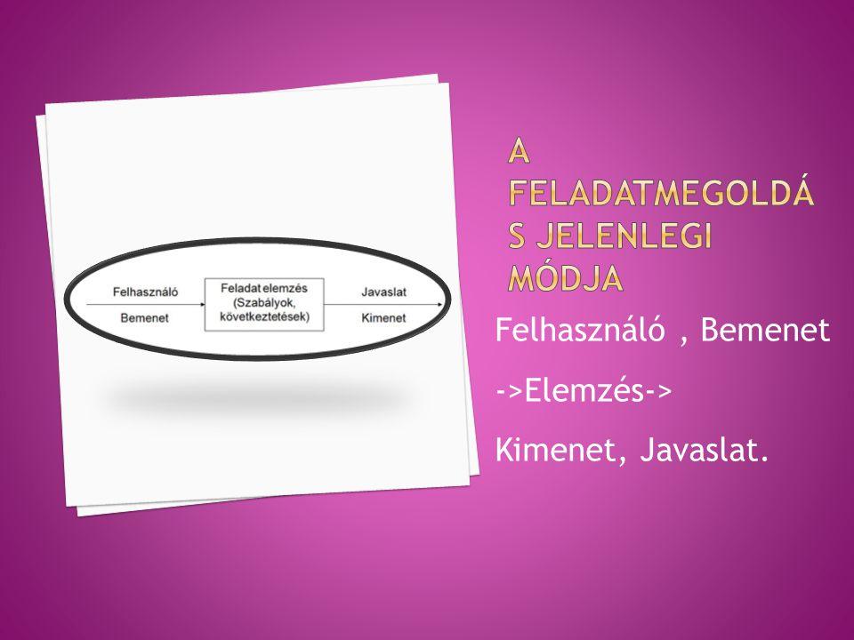 Felhasználó, Bemenet ->Elemzés-> Kimenet, Javaslat.