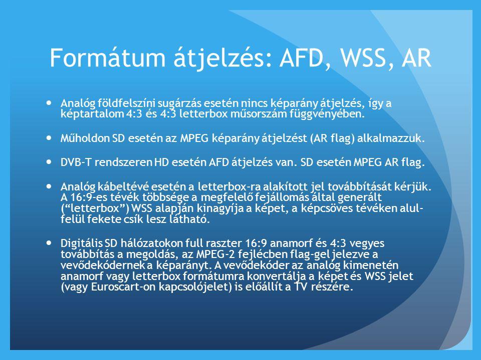Formátum átjelzés: AFD, WSS, AR  Analóg földfelszíni sugárzás esetén nincs képarány átjelzés, így a képtartalom 4:3 és 4:3 letterbox műsorszám függvé