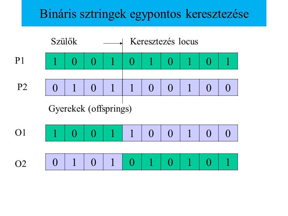 Bináris sztringek egypontos keresztezése 1001010101 0101100100 1001100100 0101010101 Keresztezés locusSzülők Gyerekek (offsprings) P1 P2 O1 O2