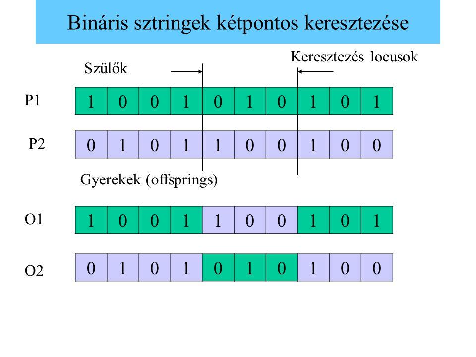 Bináris sztringek kétpontos keresztezése 1001010101 0101100100 1001100101 0101010100 Keresztezés locusok Szülők Gyerekek (offsprings) P1 P2 O1 O2