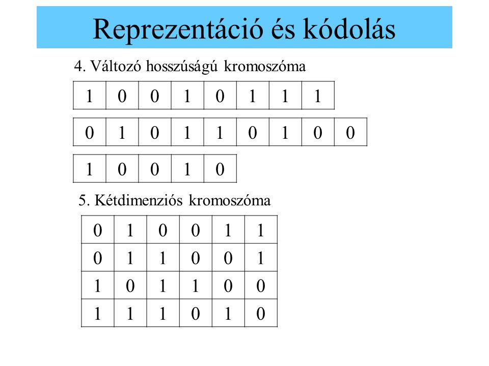 Reprezentáció és kódolás 10010111 4. Változó hosszúságú kromoszóma 010110100 10010 5. Kétdimenziós kromoszóma 010011 011001 101100 111010