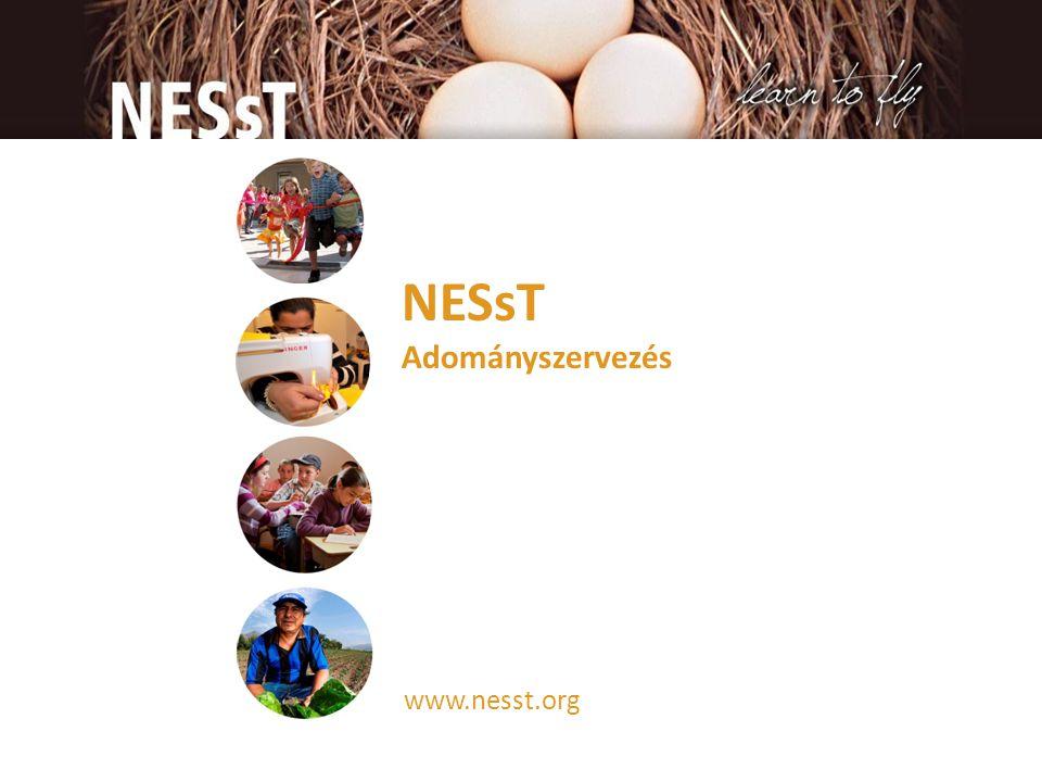 Köszönöm! Elérhetőségek: Vörös Éva evoros@nesst.org