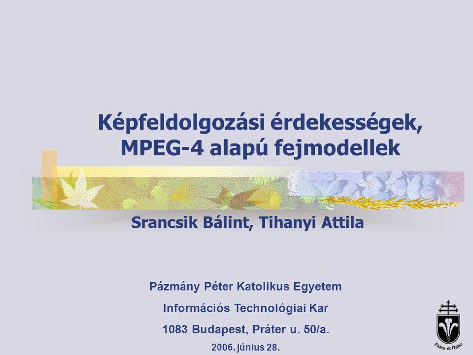 Péter Pázmány Catholic University, Department of Information Technology Lucia -Bőr (15736) -Haj (4608) -Szemek (5376) -Fogak (1033) -Nyelv (236) -Torok (318)