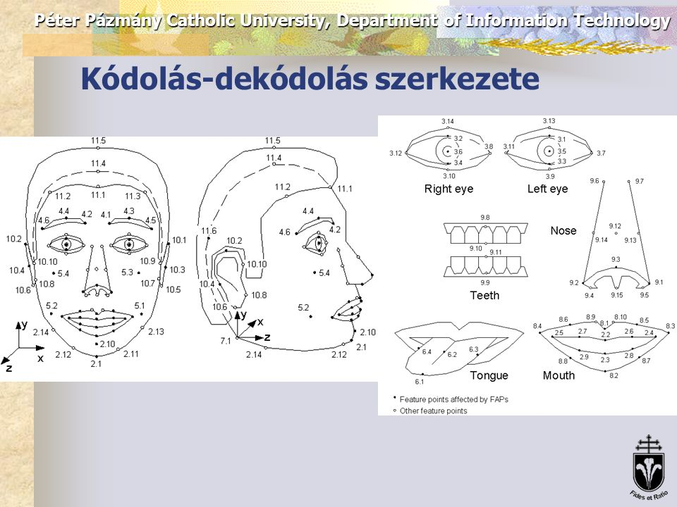 Péter Pázmány Catholic University, Department of Information Technology Kódolás-dekódolás szerkezete FDP – Face Definition Parameter FP – Feature Point FAP – Facial Animation Parameter FAPU – Facial Animation Parameter Unit (FAT – Face Animation Tables)