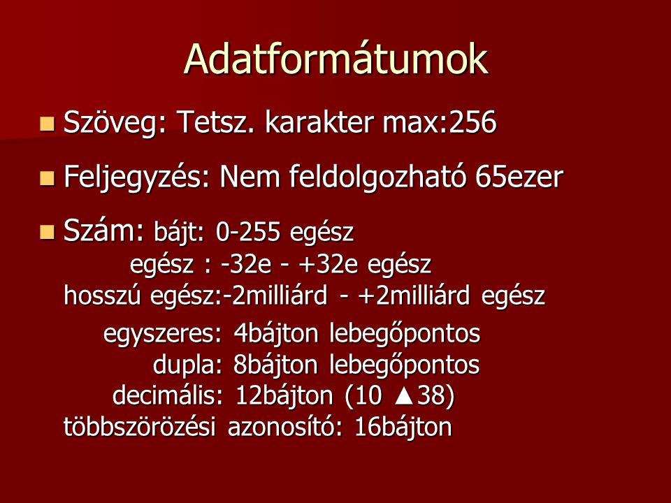 Adatformátumok  Szöveg: Tetsz. karakter max:256  Feljegyzés: Nem feldolgozható 65ezer  Szám: bájt: 0-255 egész egész : -32e - +32e egész hosszú egé