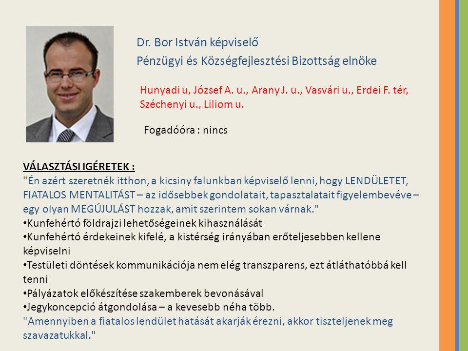 Dr.Bor István képviselő Pénzügyi és Községfejlesztési Bizottság elnöke Hunyadi u, József A.