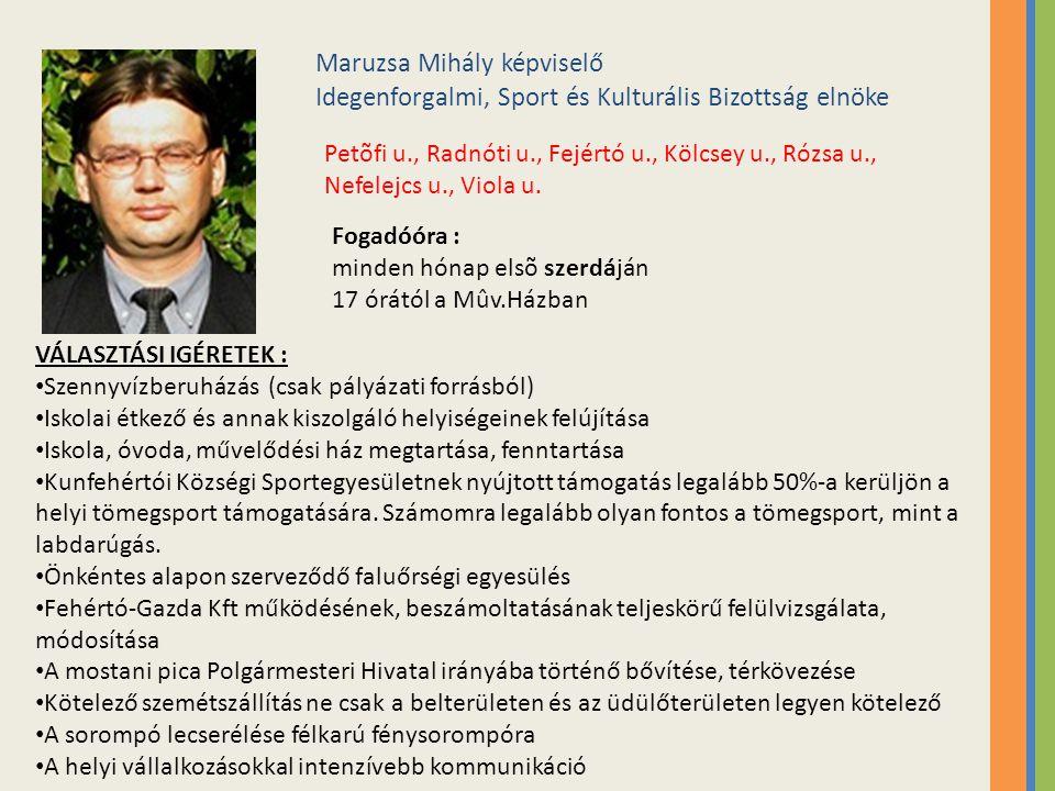 Maruzsa Mihály képviselő Idegenforgalmi, Sport és Kulturális Bizottság elnöke Petõfi u., Radnóti u., Fejértó u., Kölcsey u., Rózsa u., Nefelejcs u., V