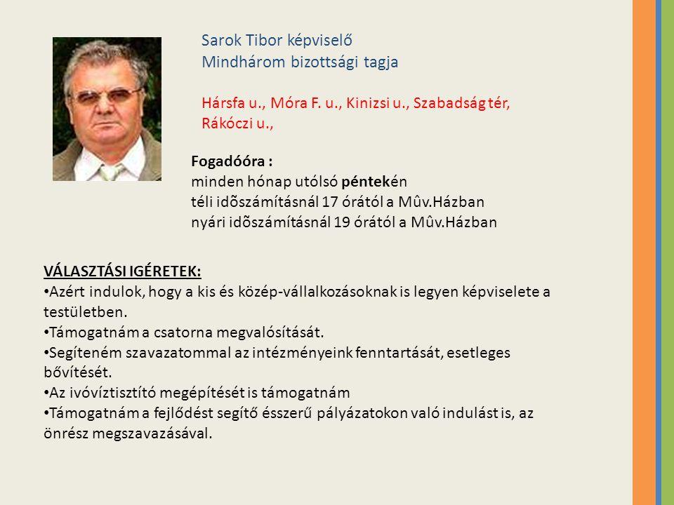 Sarok Tibor képviselő Mindhárom bizottsági tagja Hársfa u., Móra F.