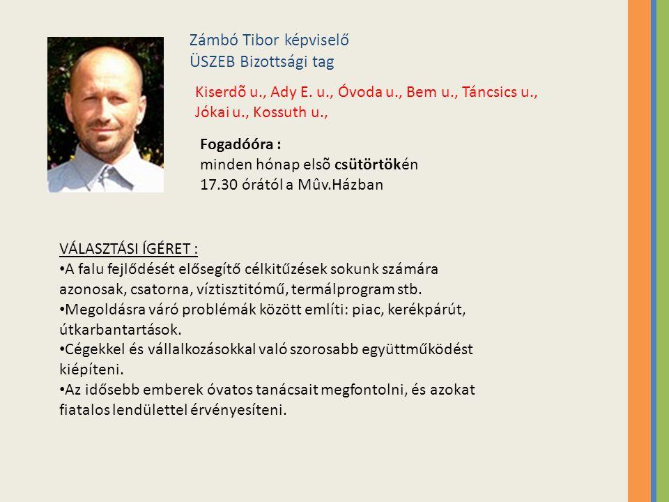 Zámbó Tibor képviselő ÜSZEB Bizottsági tag Kiserdõ u., Ady E.