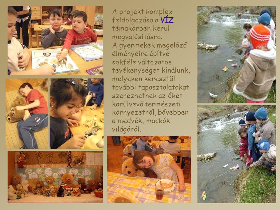 A projekt komplex feldolgozása a VÍZ témakörben kerül megvalósításra. A gyermekek megelőző élményeire építve sokféle változatos tevékenységet kínálunk