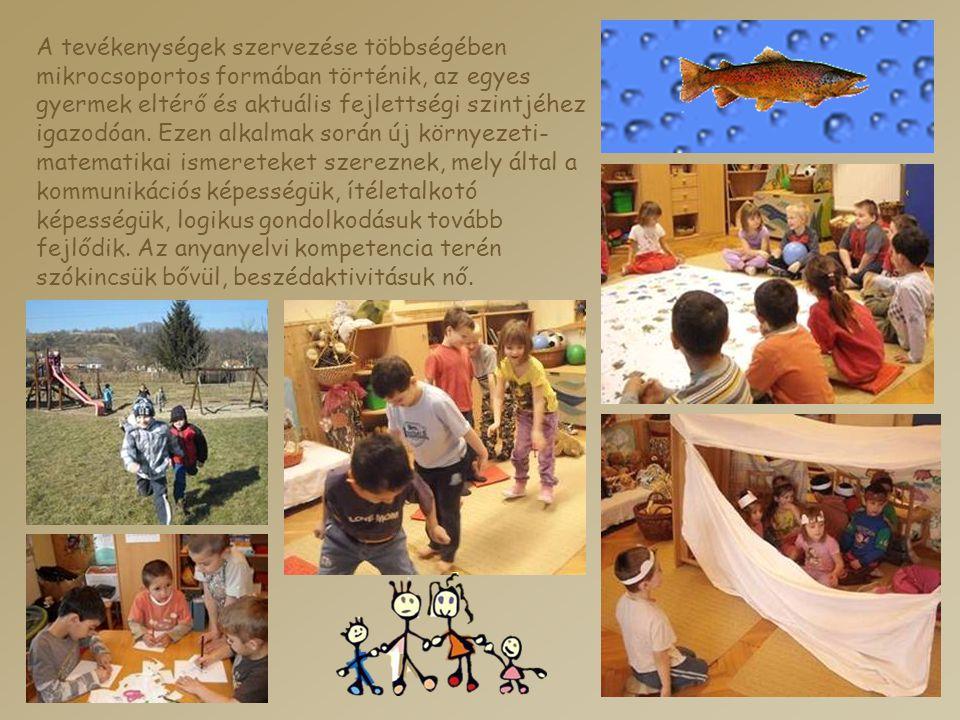 A tevékenységek szervezése többségében mikrocsoportos formában történik, az egyes gyermek eltérő és aktuális fejlettségi szintjéhez igazodóan.