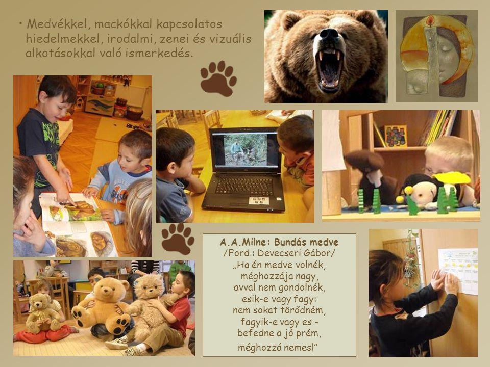 • Medvékkel, mackókkal kapcsolatos hiedelmekkel, irodalmi, zenei és vizuális alkotásokkal való ismerkedés. A.A.Milne: Bundás medve /Ford.: Devecseri G