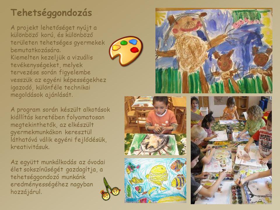 Tehetséggondozás A projekt lehetőséget nyújt a különböző korú, és különböző területen tehetséges gyermekek bemutatkozására.