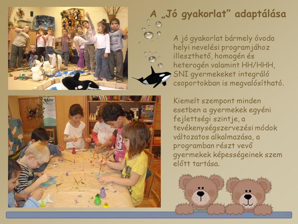 A jó gyakorlat bármely óvoda helyi nevelési programjához illeszthető, homogén és heterogén valamint HH/HHH, SNI gyermekeket integráló csoportokban is megvalósítható.