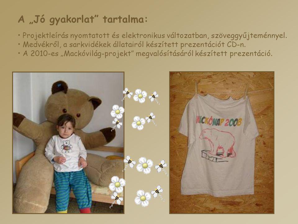 """A """"Jó gyakorlat"""" tartalma: • Projektleírás nyomtatott és elektronikus változatban, szöveggyűjteménnyel. • Medvékről, a sarkvidékek állatairól készítet"""