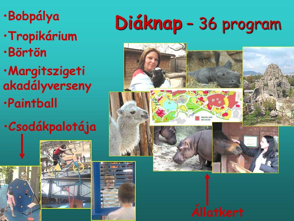 Diáknap – 36 program Állatkert • •Tropikárium • •Margitszigeti akadályverseny • •Csodákpalotája • •Börtön • •Paintball • •Bobpálya