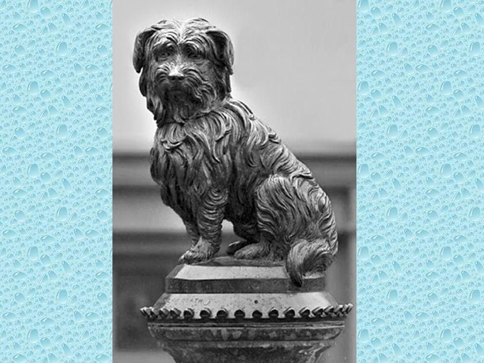 Greyfriars Bobby: A kutyahűség szimbóluma Bobby, aki gazdija halála után hátralevő éveit annak sírjánál fekve töltötte. Emlékére szobrot emeltek.