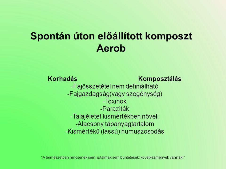 Spontán úton előállított komposzt Aerob KorhadásKomposztálás -Fajösszetétel nem definiálható -Fajgazdagság(vagy szegénység) -Toxinok -Paraziták -Talaj