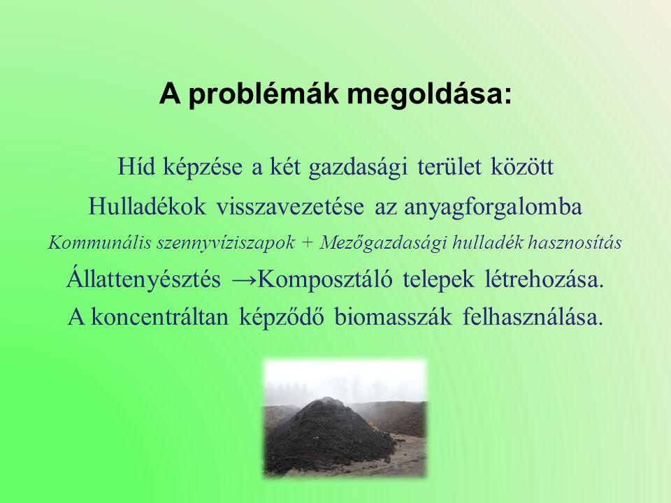 A problémák megoldása: Híd képzése a két gazdasági terület között Hulladékok visszavezetése az anyagforgalomba Kommunális szennyvíziszapok + Mezőgazdasági hulladék hasznosítás Állattenyésztés → Komposztáló telepek létrehozása.