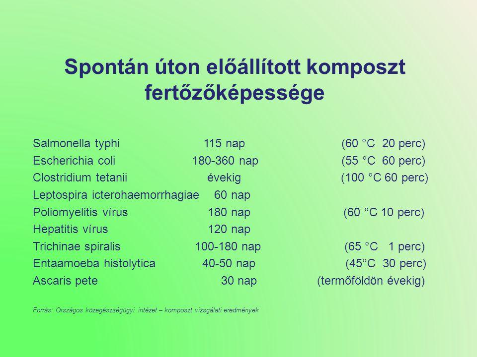 Irányított komposztálással előállított termék Aerob Klasszikus komposzt - Szelektált fajok -Szabványosítható -Fajösszetétel determinált és definiálható -Célidegen fajokban szegény -Hasznos csíraszám magas(10 9-11 /g) -Patogénektől mentes -Talajéletet növeli -Magas tápanyagtartalom -Gyors humuszképződés -Kiegészítő hatások -Biokontroll -Biopeszticid -Celluláz-aktivitás