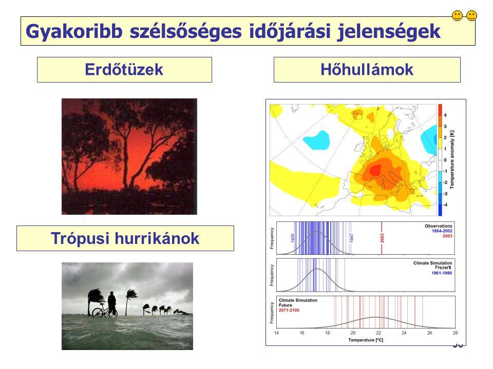 30 Gyakoribb szélsőséges időjárási jelenségek Erdőtüzek Trópusi hurrikánok Hőhullámok