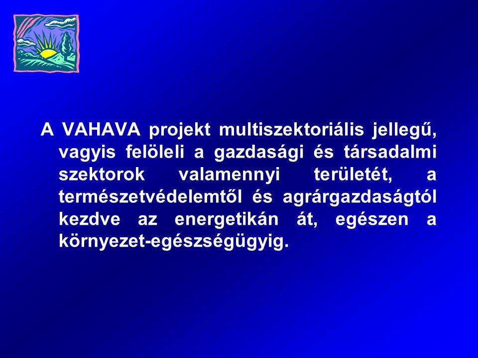 A VAHAVA projekt multiszektoriális jellegű, vagyis felöleli a gazdasági és társadalmi szektorok valamennyi területét, a természetvédelemtől és agrárga