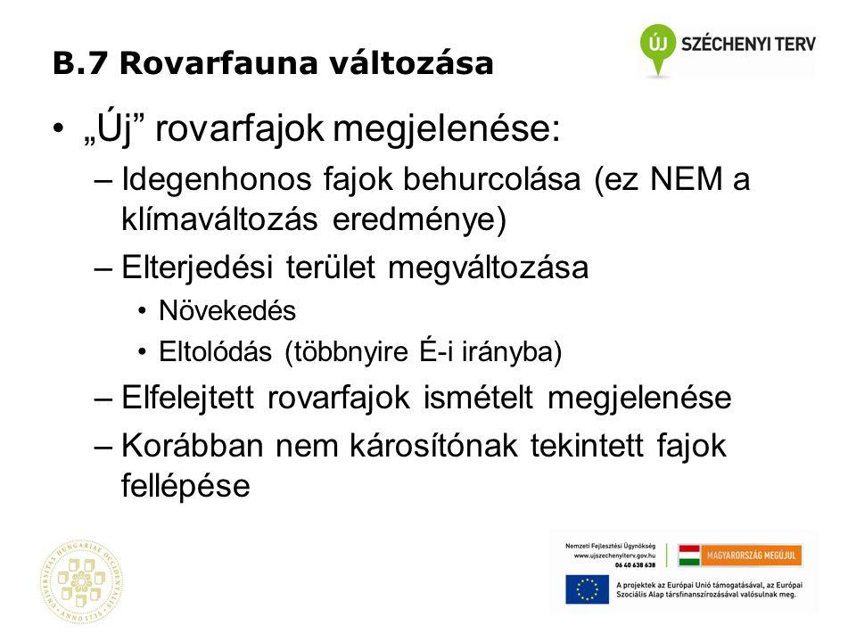 """B.7 Rovarfauna változása •""""Új"""" rovarfajok megjelenése: –Idegenhonos fajok behurcolása (ez NEM a klímaváltozás eredménye) –Elterjedési terület megválto"""