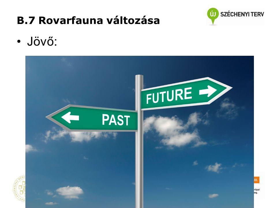 B.7 Rovarfauna változása •Jövő: