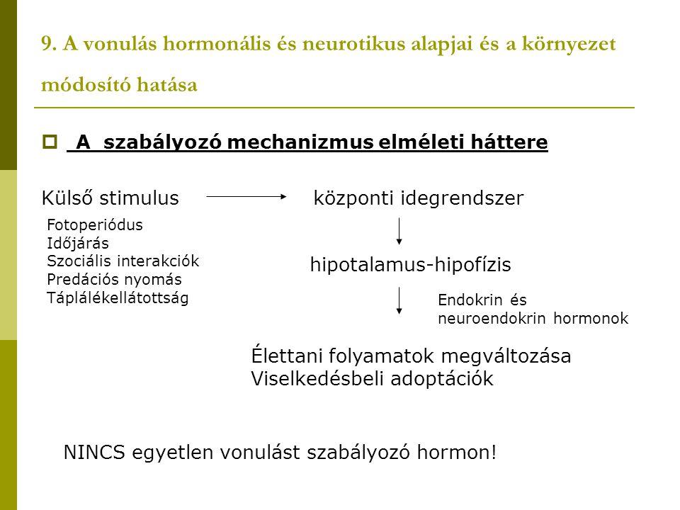 A vonulás hormonális és neurotikus alapjai és a környezet módosító hatása  A vonulás kialakulásában, részt vevő hormonok:  Pajzsmirigy hormonok (metabolikus folyamatok szabályozása)  Tesztoszteron (elsősegíti a zsírfelhalmozódást, az éjszakai aktivitást növeli)  Prolaktin és glükokortikoidok (elsősegítik a zsírfelhalmozódást)  Inzulin (zsírdepóképzés szabályozásában van szerepe)  Szomatotropin (indirekt részt vesz a pajzsmirigy stimulálásában, direkt hatása van a mellizomzat megnövekedésére)