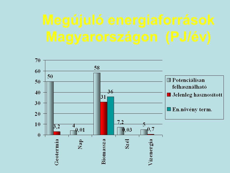 Napenergia potenciál MTA Megújuló Technológiák Albizottsága elkészített felmérése alapján: aktív szolár termikus potenciál48,8 PJ mezőgazdasági szolár termikus potenciál 2,6 PJ passzív szolár termikus potenciál37,8 PJ szoláris fotovillamos potenciál 1749,0 PJ 405 e MWp 486 TWh/év