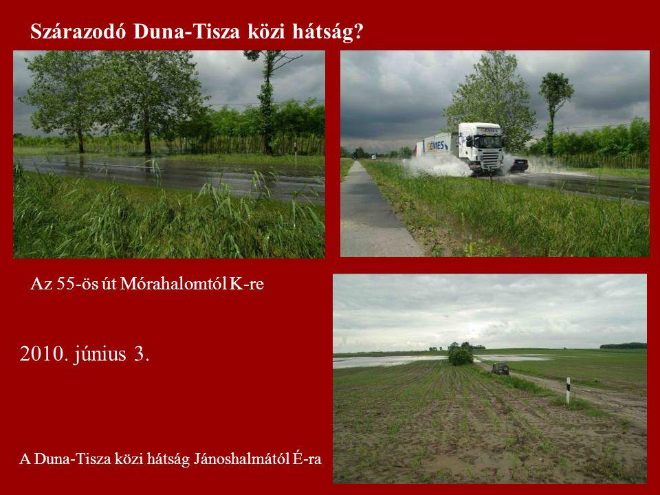 Szárazodó Duna-Tisza közi hátság? 2010. június 3. Az 55-ös út Mórahalomtól K-re A Duna-Tisza közi hátság Jánoshalmától É-ra