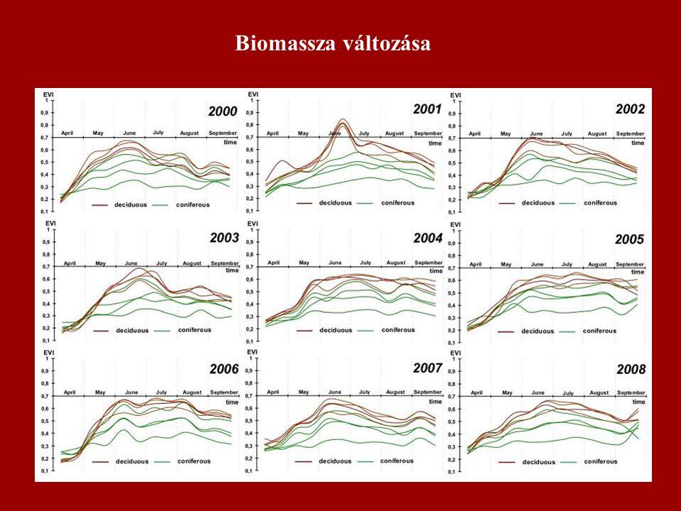 Biomassza változása