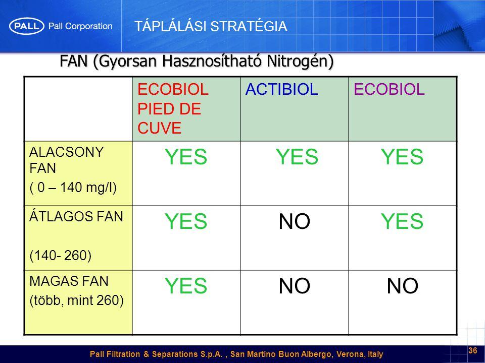 Pall Filtration & Separations S.p.A., San Martino Buon Albergo, Verona, Italy 36 TÁPLÁLÁSI STRATÉGIA ECOBIOL PIED DE CUVE ACTIBIOLECOBIOL ALACSONY FAN ( 0 – 140 mg/l) YES ÁTLAGOS FAN (140- 260) YESNOYES MAGAS FAN (több, mint 260) YESNO FAN (Gyorsan Hasznosítható Nitrogén) FAN (Gyorsan Hasznosítható Nitrogén)
