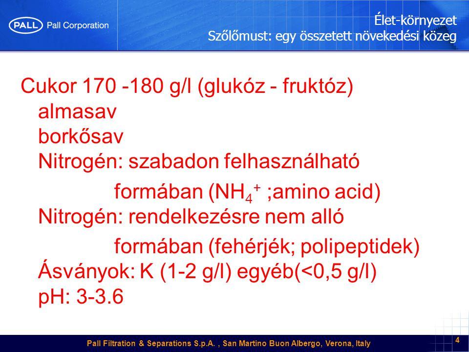 Pall Filtration & Separations S.p.A., San Martino Buon Albergo, Verona, Italy 4 Élet-környezet Szőlőmust: egy összetett növekedési közeg Cukor 170 -180 g/l (glukóz - fruktóz) almasav borkősav Nitrogén: szabadon felhasználható formában (NH 4 + ;amino acid) Nitrogén: rendelkezésre nem alló formában (fehérjék; polipeptidek) Ásványok: K (1-2 g/l) egyéb(<0,5 g/l) pH: 3-3.6