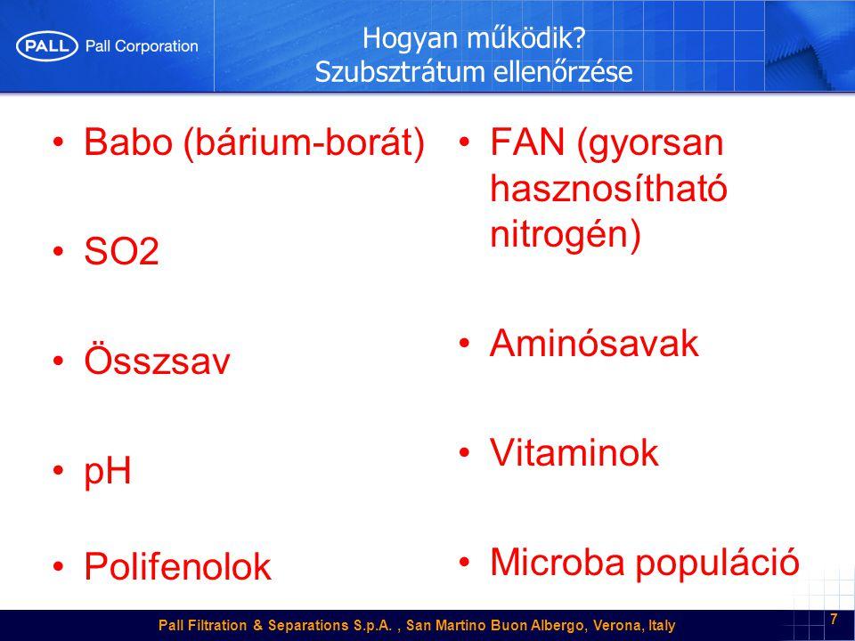 Pall Filtration & Separations S.p.A., San Martino Buon Albergo, Verona, Italy 28 Melyek az inhibitor faktorok.