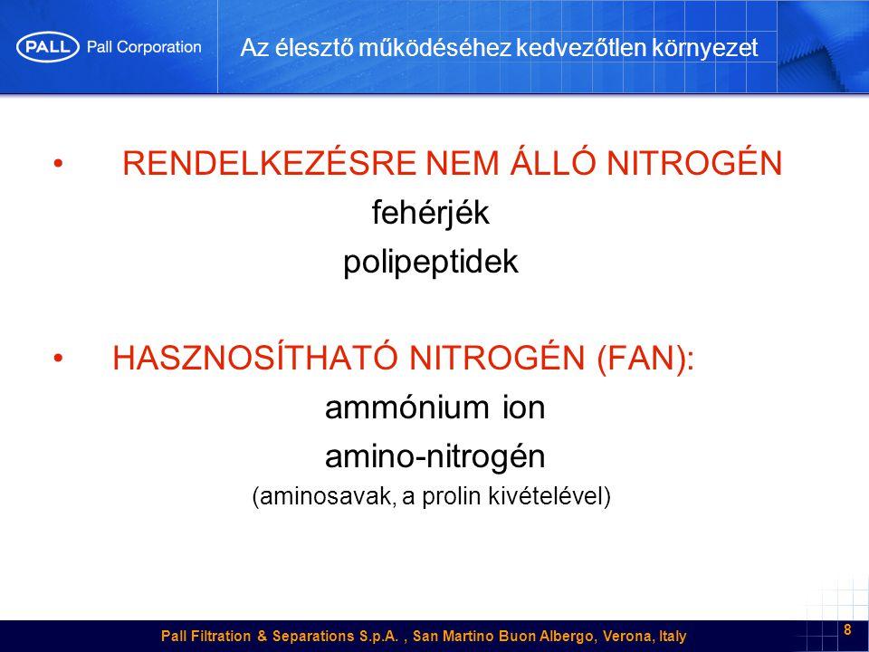 Pall Filtration & Separations S.p.A., San Martino Buon Albergo, Verona, Italy 8 Az élesztő működéséhez kedvezőtlen környezet • RENDELKEZÉSRE NEM ÁLLÓ NITROGÉN fehérjék polipeptidek • HASZNOSÍTHATÓ NITROGÉN (FAN): ammónium ion amino-nitrogén (aminosavak, a prolin kivételével)