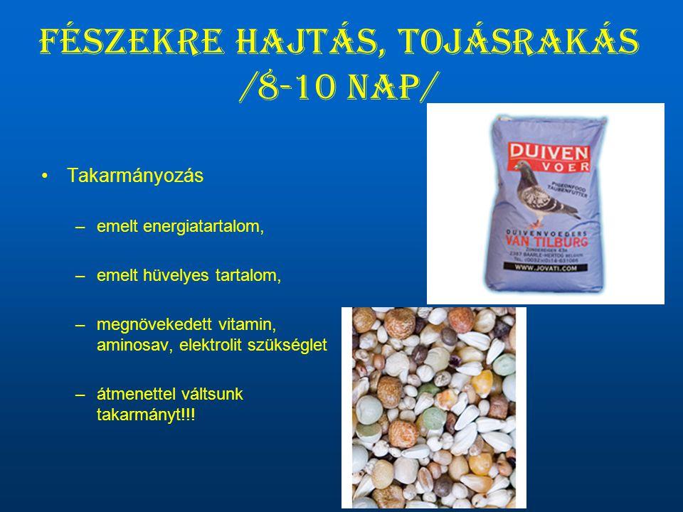 Fészekre hajtás, tojásrakás /8-10 nap/ •Takarmányozás –emelt energiatartalom, –emelt hüvelyes tartalom, –megnövekedett vitamin, aminosav, elektrolit s