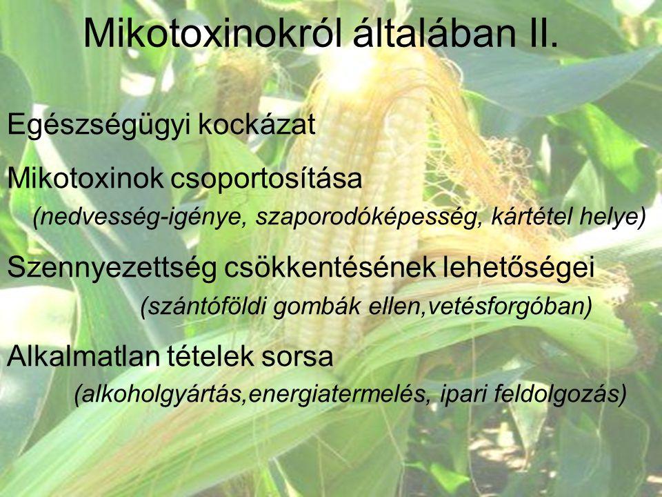 Mikotoxinokról általában II. Egészségügyi kockázat Mikotoxinok csoportosítása (nedvesség-igénye, szaporodóképesség, kártétel helye) Szennyezettség csö