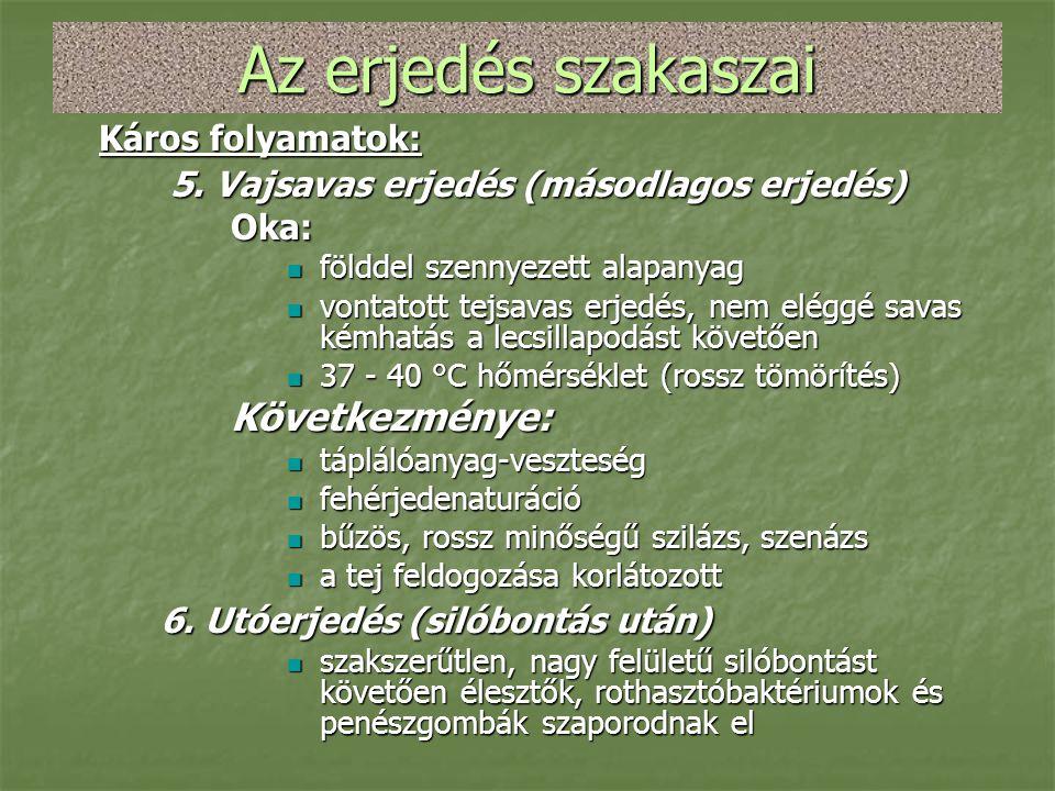 Az erjedés szakaszai Káros folyamatok: 5. Vajsavas erjedés (másodlagos erjedés) 5. Vajsavas erjedés (másodlagos erjedés)Oka:  földdel szennyezett ala